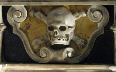 What Bones Teach Us